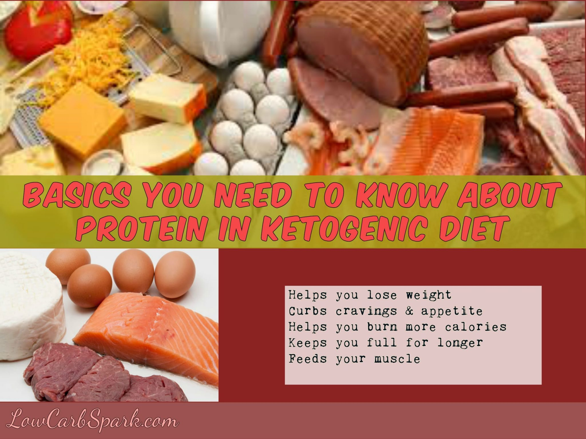 Basics you need to know about protein in Ketogenic diet