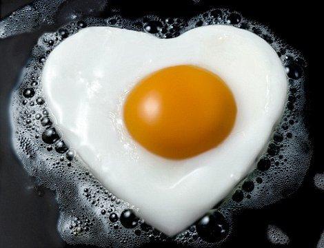 Eto protein egg