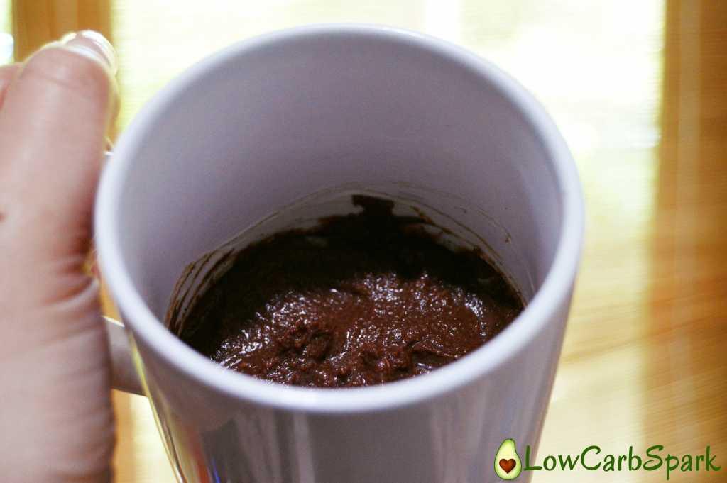 Low Carb Chocolate Brownie Mug Cake