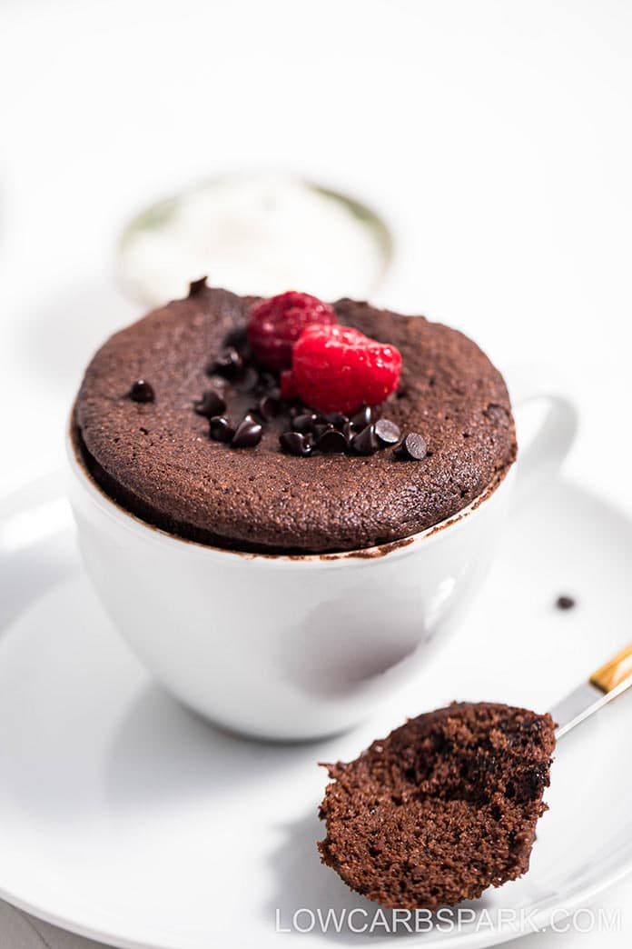 Easy Keto Chocolate Mug Cake Low Carb Spark