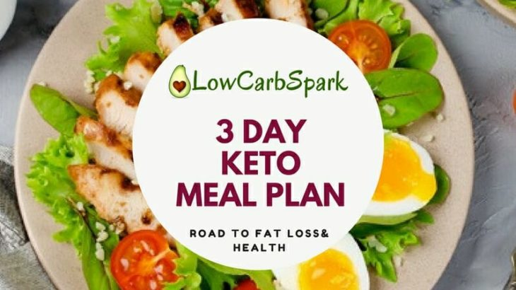 3 day FREE Keto Meal Plan for Beginner with Macros and Recipes