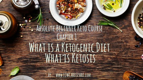 What is a Ketogenic Diet? What is Ketosis? – Absolute Beginner Keto Course