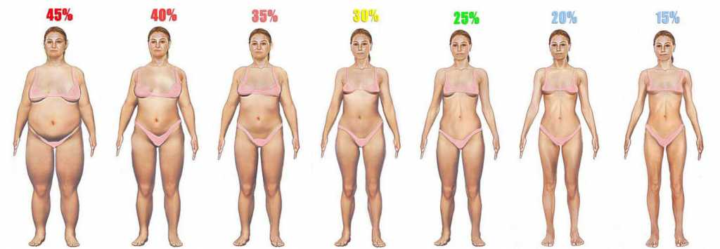 compare for body fat