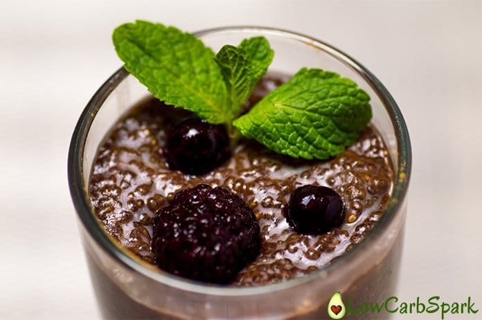 keto chia seeds pudding keto toppings