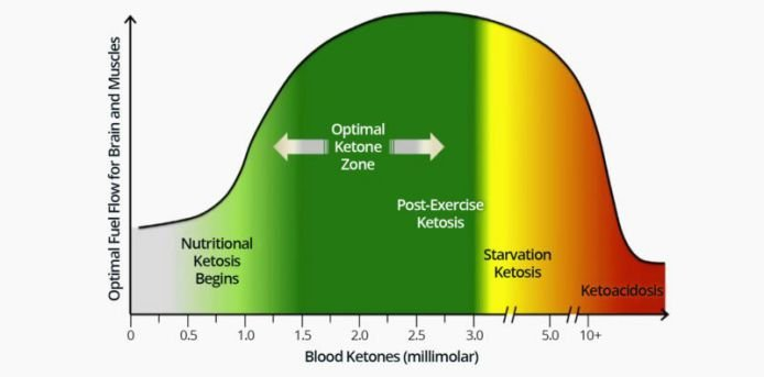 diference between ketosis and ketoacidosis
